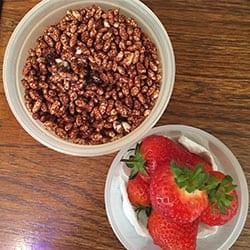 8 - flavor - cereal2