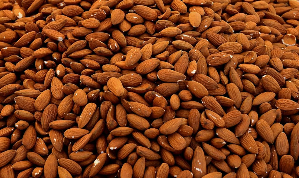 Salted Almond Chocolate CSA 2021