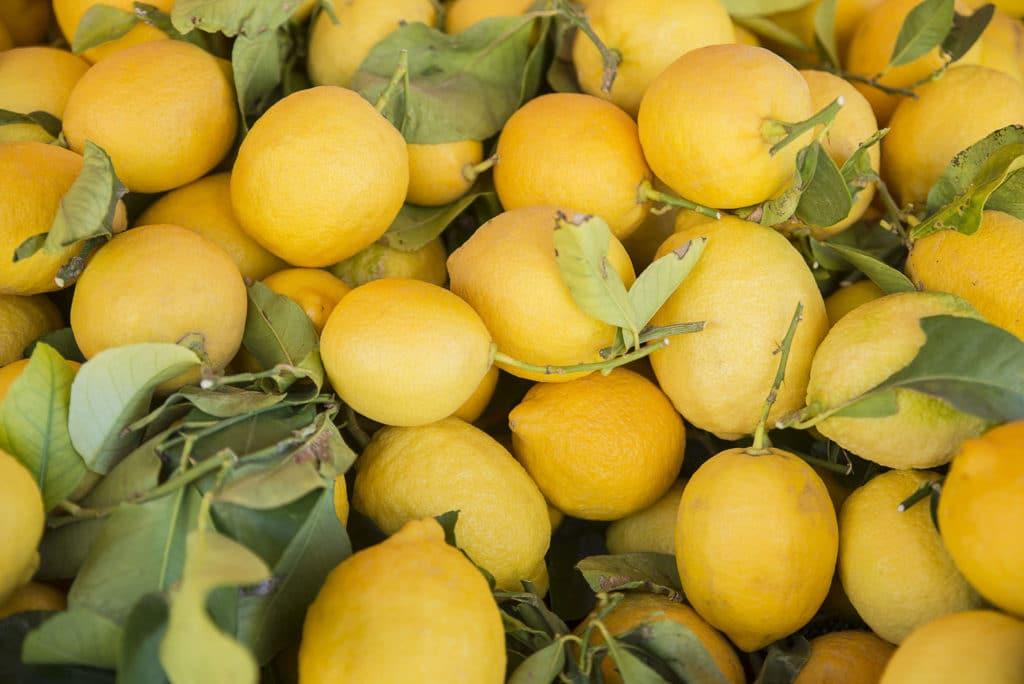 Lemon Oil Italian