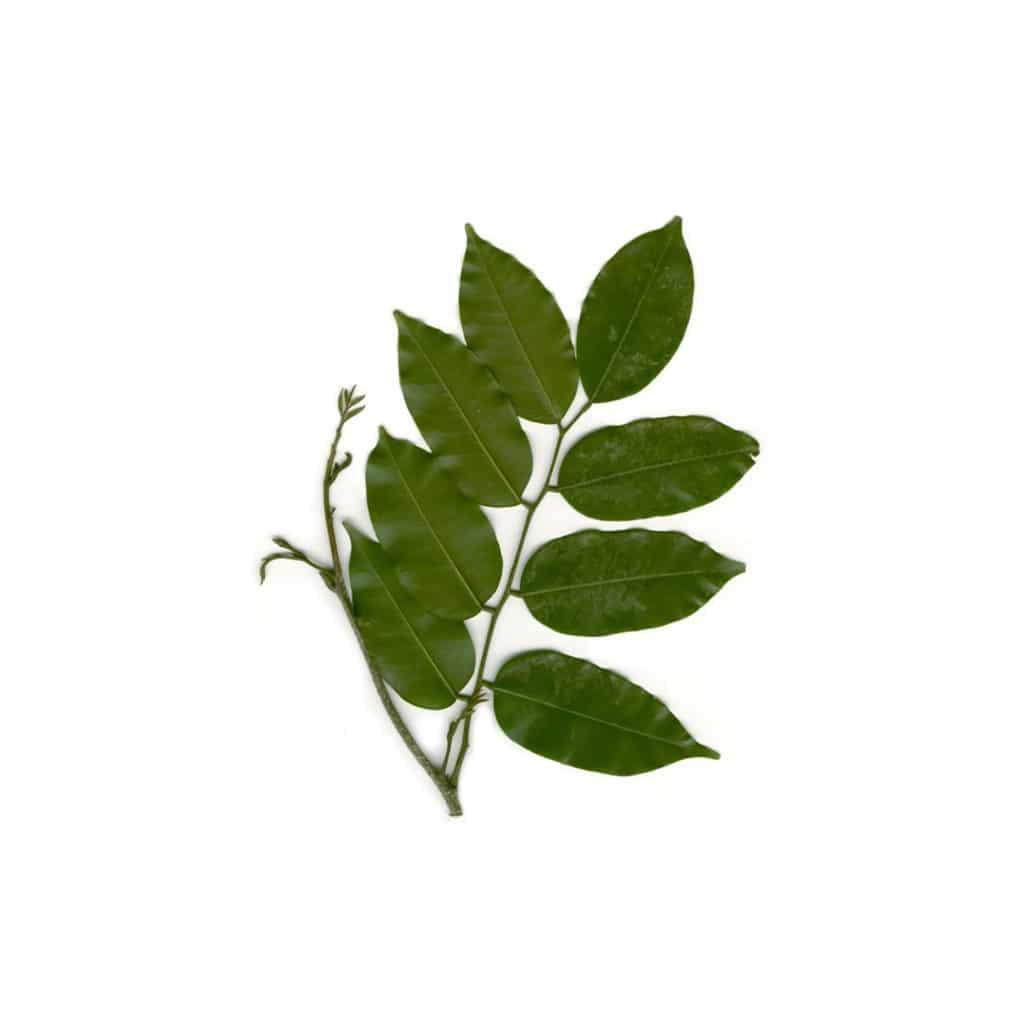Balsam Peru whitespace