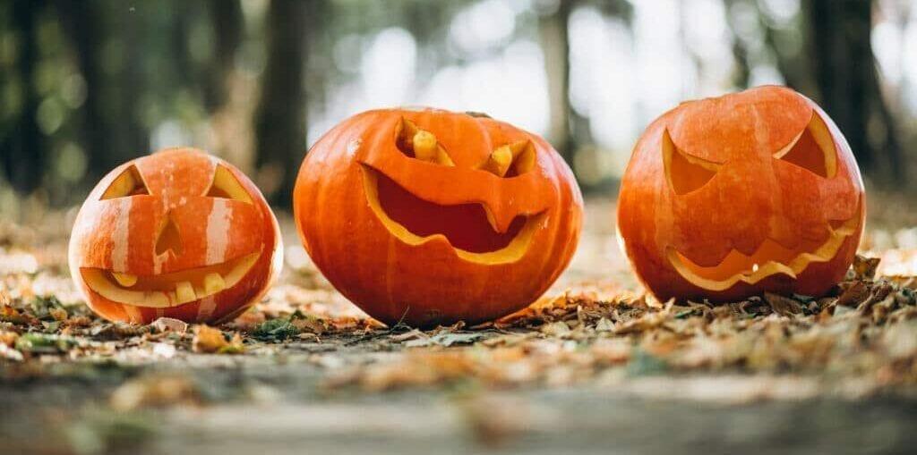 berjé halloween! #teamberje