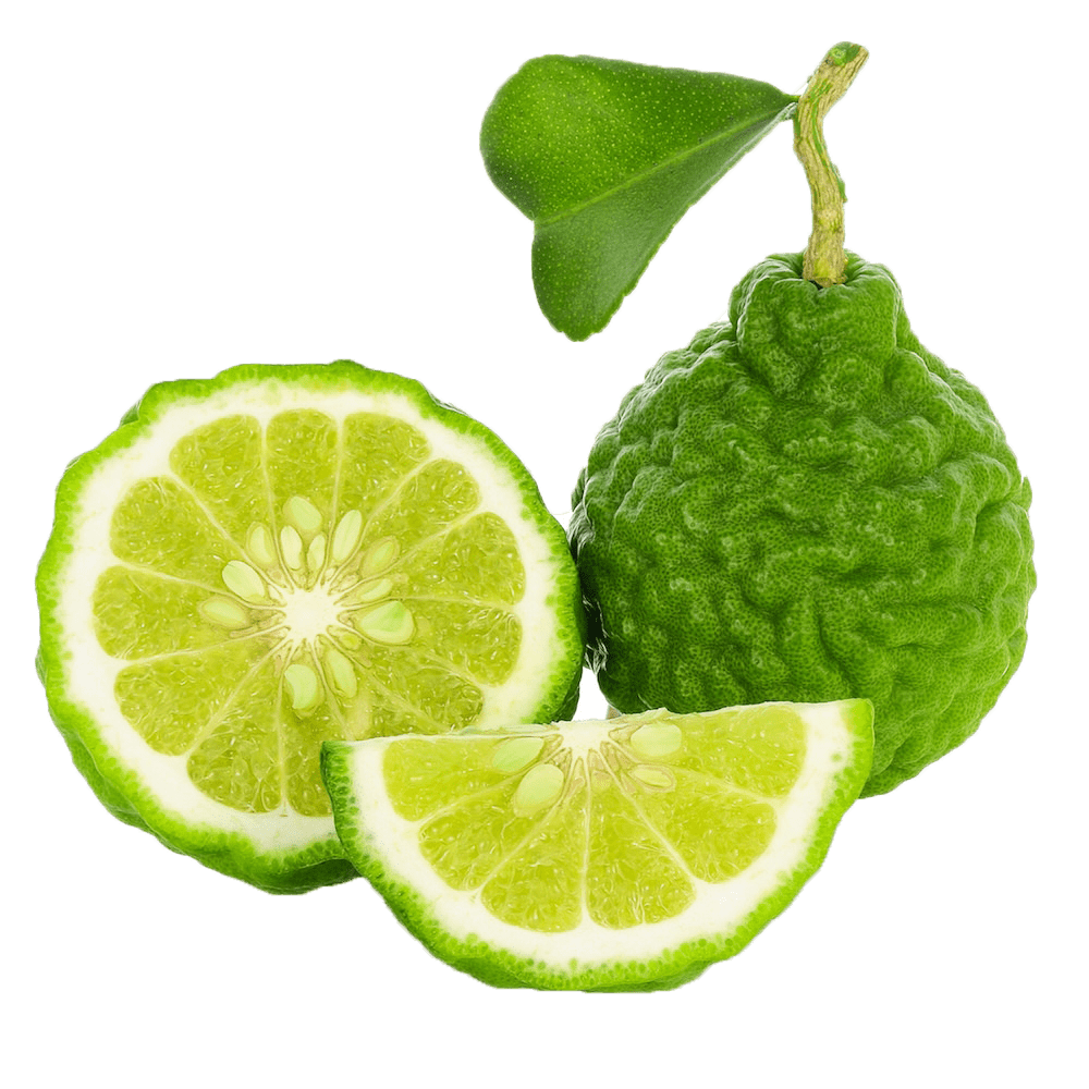Bergamot-Oil-Citrus-aurantium-var-bergamia-Essential-Oil-ProductPic